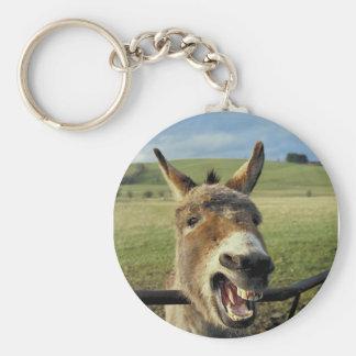 Donkey Key Chains