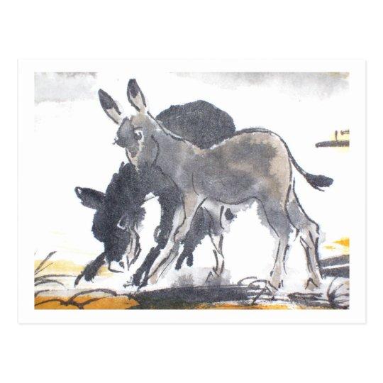 Donkey No. 01 * donkey postcards * Donkey