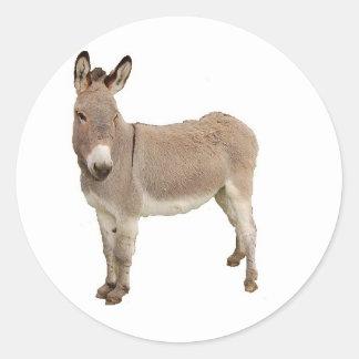 Donkey Photograph Design Classic Round Sticker