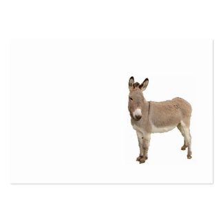Donkey Photograph Design Large Business Card
