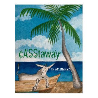 Donkey Postcard  Casstaway