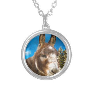 Donkey Silver Plated Necklace
