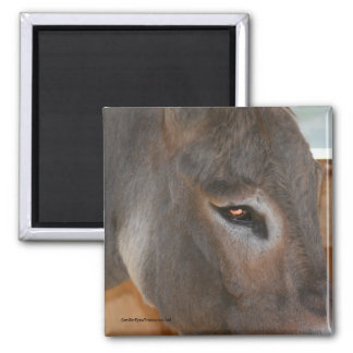 Donkey Thoughts Farm Animal Nature Magnet