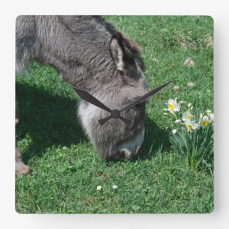 Donkeys Don't Eat Wild Daffodils Wallclock