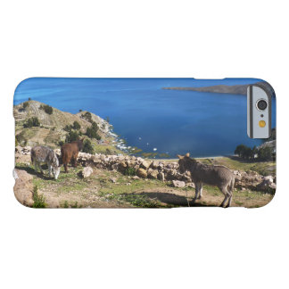 Donkeys' paradise barely there iPhone 6 case