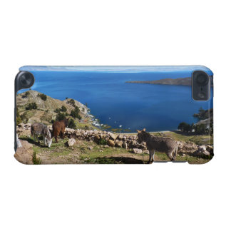 Donkeys' paradise iPod touch (5th generation) cover