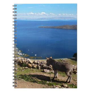 Donkeys' paradise notebook