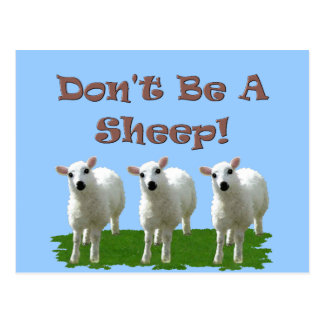 Don't Be a Sheep (Conformity) Postcard
