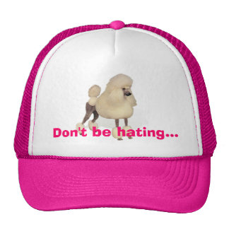 Don't be hating...trucker cap trucker hat