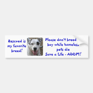 Don't Breed or Buy While Homeless Pets Die Bumper Sticker
