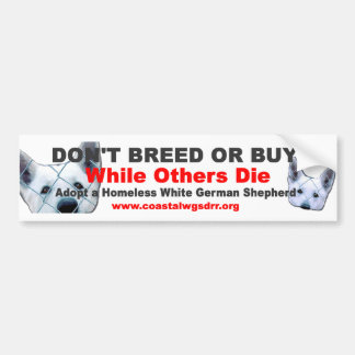 Don't breed or buy while others die bumper sticker
