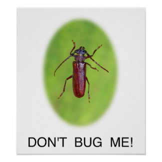 """""""Don't Bug Me!"""" Poster"""