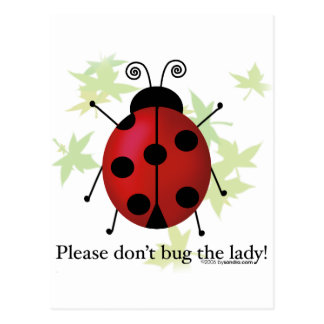 Don't bug the Lady Postcard