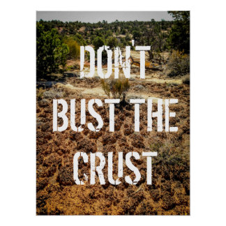 Don't Bust the Crust-Cryptobiotic Soil Poster