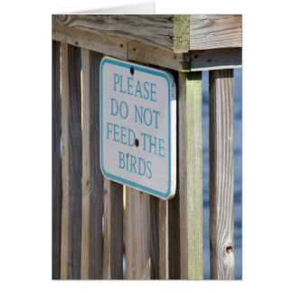 Don't Feed the Birds card