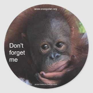 Don't Forget Me (Primate Baby) Classic Round Sticker