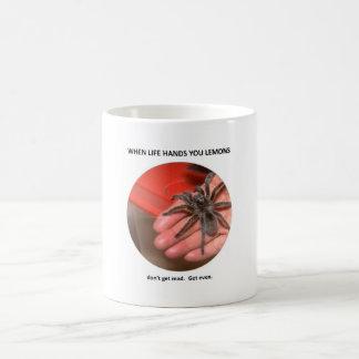 dont-get-mad-get-even coffee mug