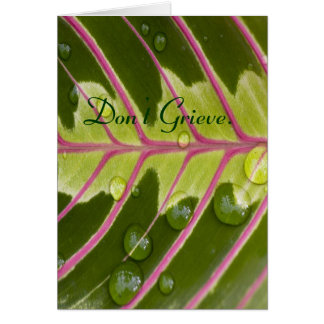 Don't Grieve. Card