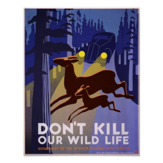 Don't kill our wild life, WPA poster