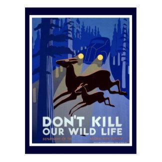 Don't Kill Our Wildlife Postcard
