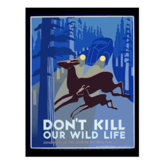 Don't Kill Our Wildlife Vintage Poster Postcard