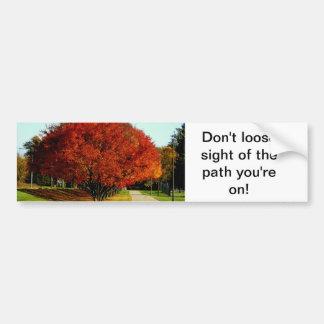 Don't Loose Sight bumper sticker