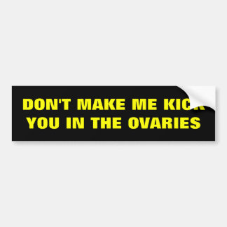 DON'T MAKE ME KICK YOU IN THE OVARIES BUMPER STICKER