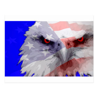Dont mess with America Postcard