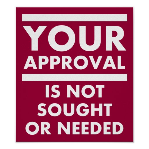 Don't Need Your Approval Funny Poster