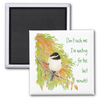 Don't Rush Me Procrastination Fun Bird Humor Square Magnet