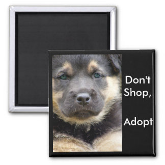 Don't Shop Adopt ! shep magnets