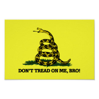 Don't Tread on me Bro Poster