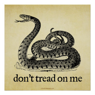 Don't Tread on Me Print