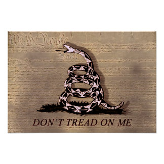 Don't Tread On Poster