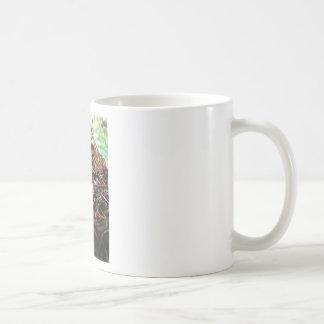Don't Trip Mushroom Coffee Mug