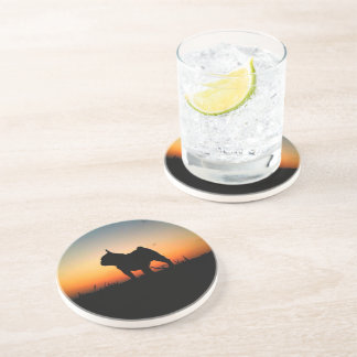 "Door-cups ""Buldog put-pity-sun "" Coaster"
