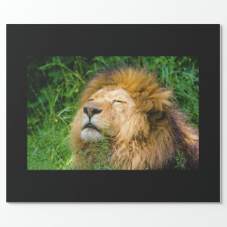 Dope Lion in the grass Wrapping Paper