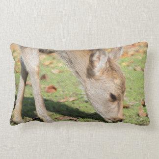 Doreen Pillow