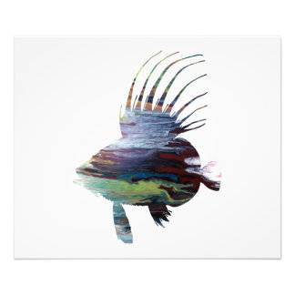 Dory fish - Colorful fish art Photo Print