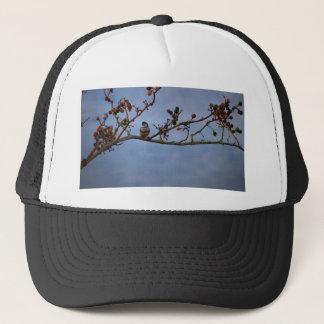 Double-barred finch on branch trucker hat