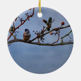 Double-barred finch ornament
