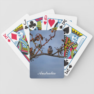 Double-barred finch playing cards