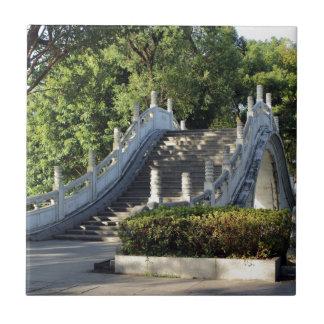 Double bridges, Guilin, China Tile