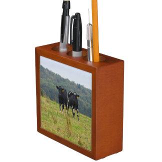 Double Cattle Troube Desk Organizer
