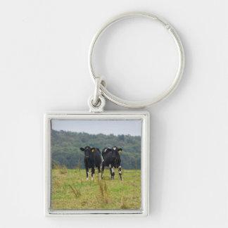 Double Cattle Troube Keychain
