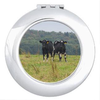 Double Cattle Troube Vanity Mirror