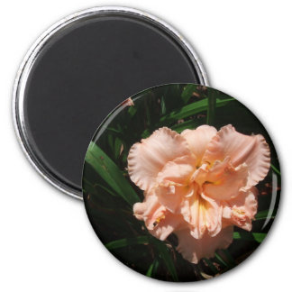 Double Daylily Magnet