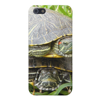 Double Decker Turtles Case For iPhone 5/5S