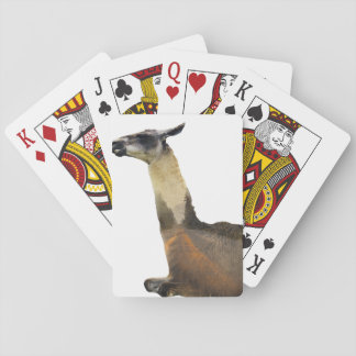 Double Exposure Llama Playing Cards