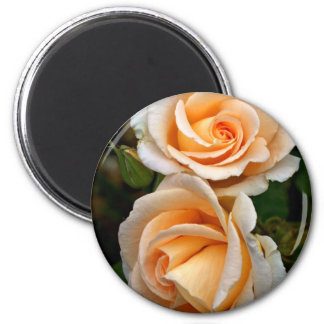 Double Orange Rose 2 Inch Round Magnet